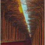 David Schnell. Wald. 1999.
